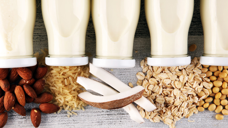 Various plant milks with the ingredients they're made from