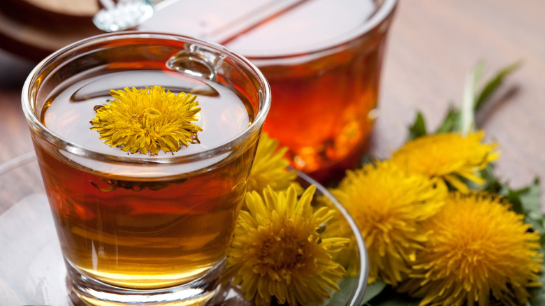 When You Drink Dandelion Tea Every Day, This Is What Happens To Your Body