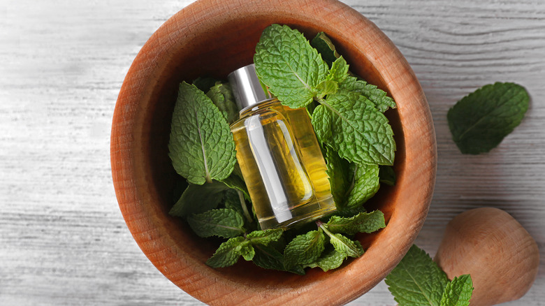 peppermint oil in a bottle on top of mint leaves in a wooden bowl
