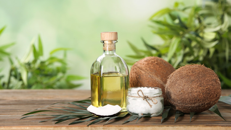 coconut oil beside coconuts