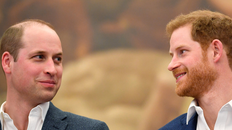 Prince William and Prince Harry look lovingly at each other