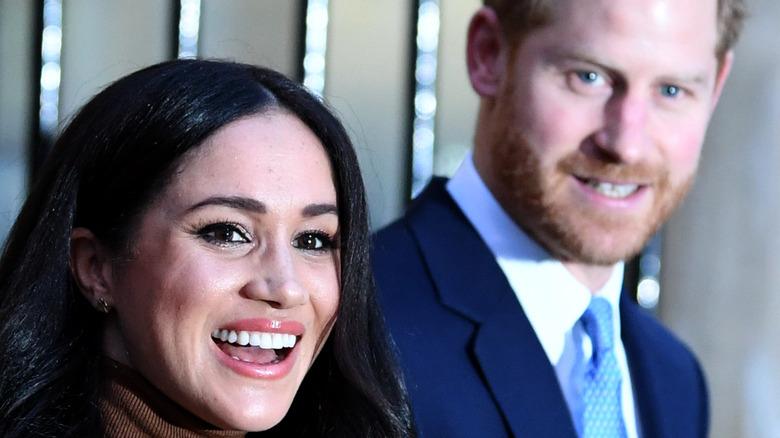 Meghan Markle and Prince Harry brown dress