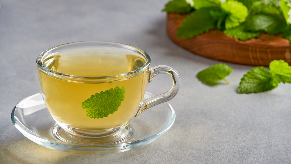 Cup of lemon balm tea