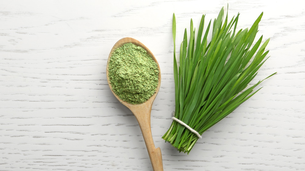 Spoonful of green superfood powder
