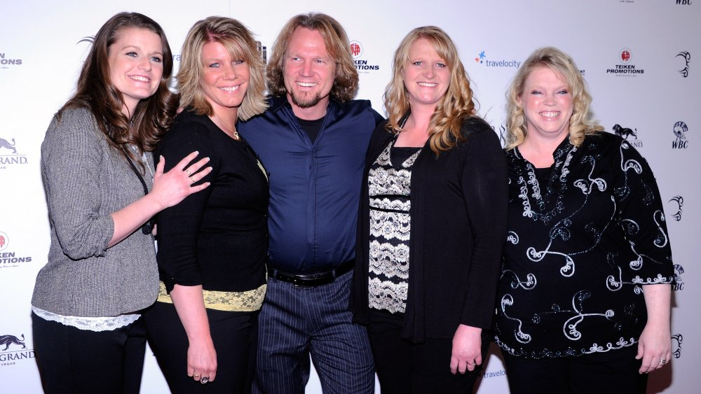 The stars of TLC's Sister Wives