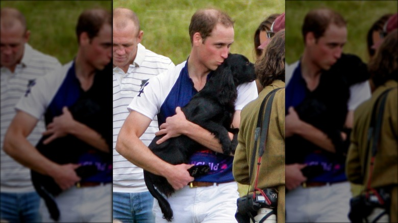 Prince William with Lupo the dog