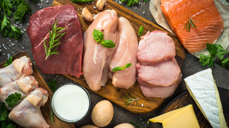 Animal-based protein sources