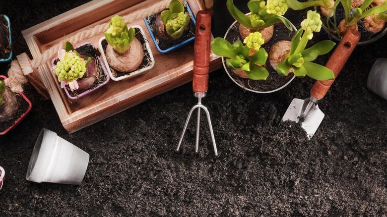 Garden tools stuck in soil
